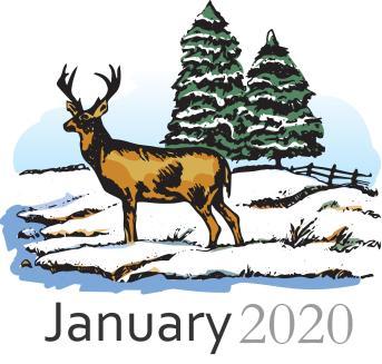 deer_18200c